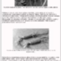 http://81.209.83.96/repository/65/joulukoriste.pdf